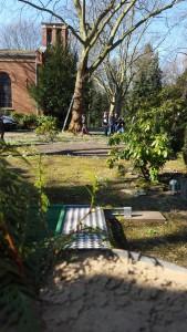 Am Grab  Fern- und Nahsehen bzw. eine Geschichte übers Trauern, Nagetiere und Kriminalfälle 20160316 130528 e1460902332386